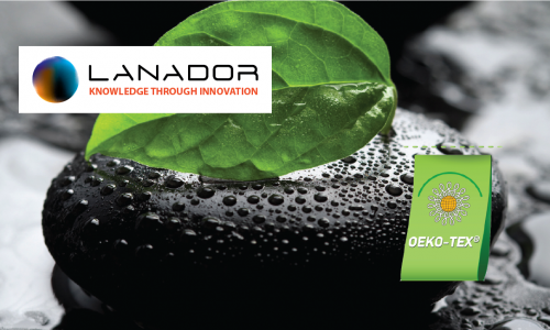 Lanador S.A Corporate Website